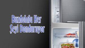 Buzdolabı Herşeyi donduruyor